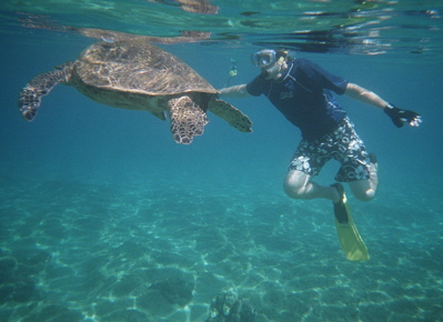 Ryan and a Sea Turtle in Maui.